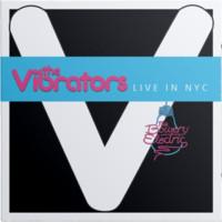 Vibrators: Live in nyc