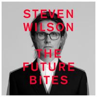 Wilson, Steven : The Future Bites