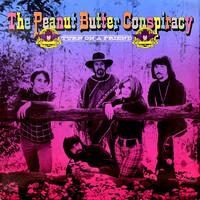 Peanut Butter Conspiracy: Turn On A Friend