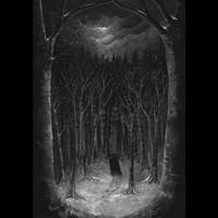 Paysage d'Hiver: Im Wald