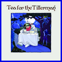 Stevens, Cat: Tea for the Tillerman 2