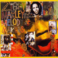Ziggy Marley And The Melody Makers: One Bright Day