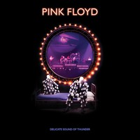 Pink Floyd : Delicate sound of thunder