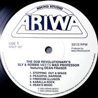 Sly & Robbie: The Dub Revolutionary's