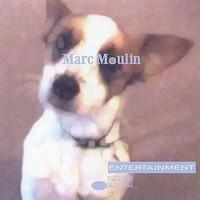 Moulin, Marc: entertainment