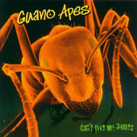 Guano Apes : Don't give me names