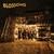 Blossoms (UK) : Blossoms - LP