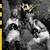 WÖYH! : KRTKRTK - CD + Футболки