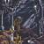 Malum : Night of the Luciferian Light - CD